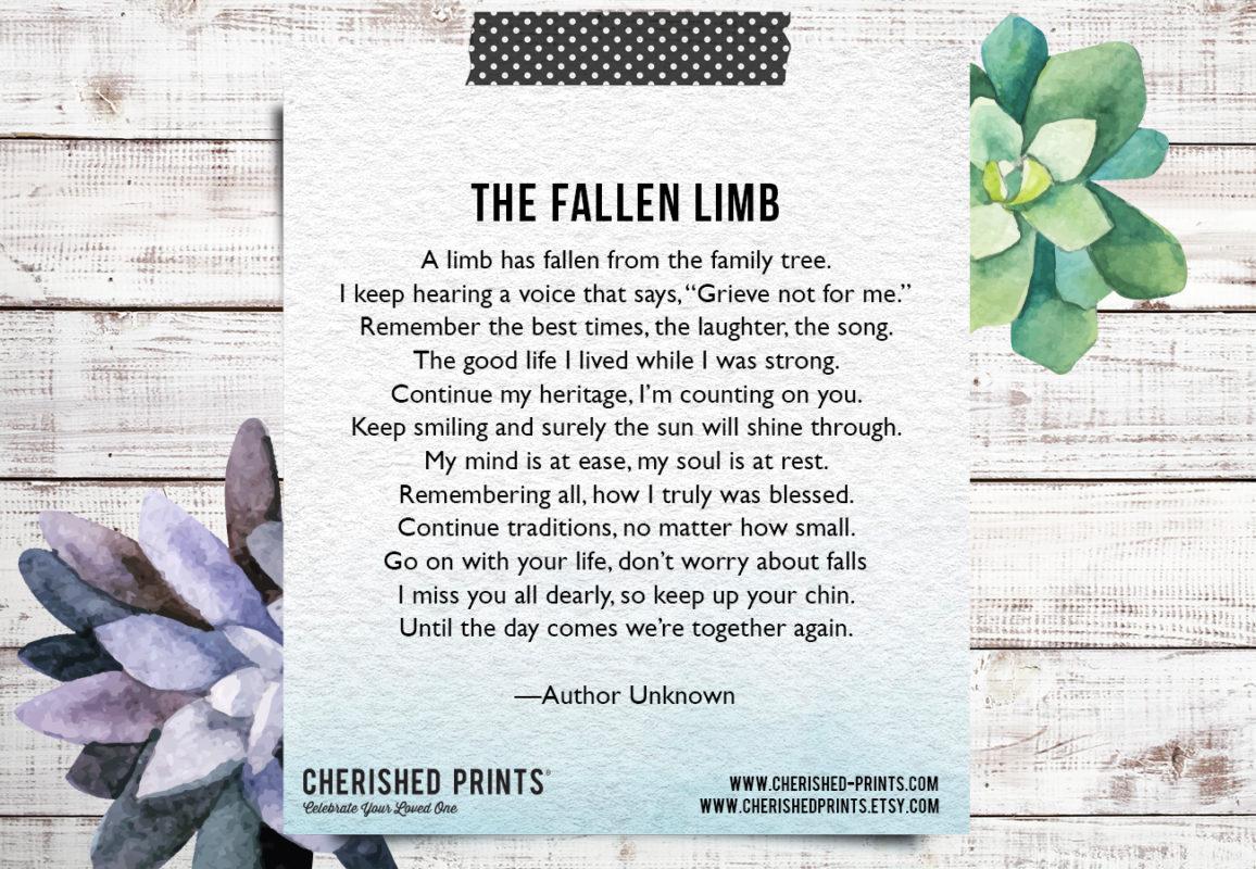 The Fallen Limb