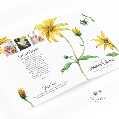 Yellow Daisies Program no cover photo