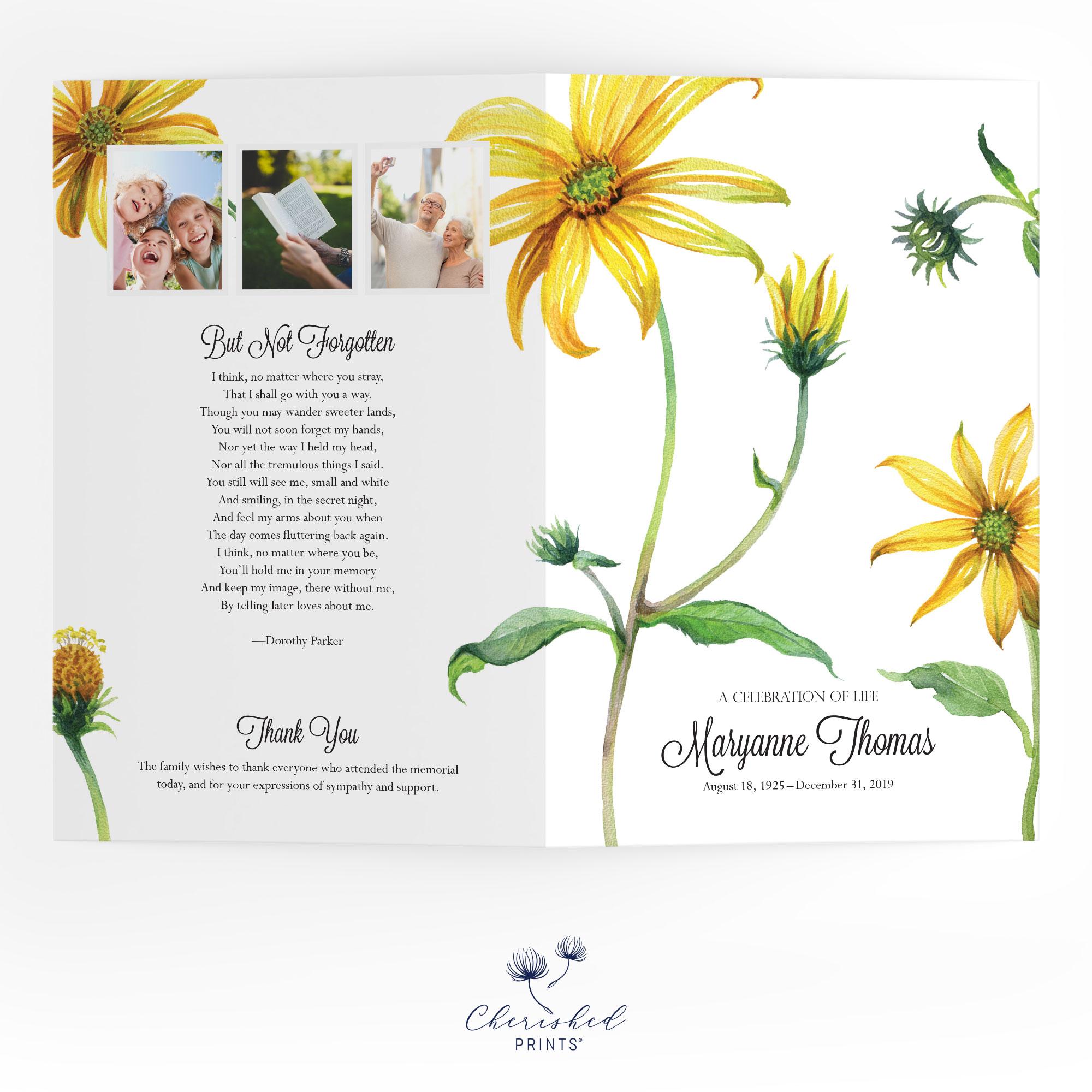 Yellow Daisies Program Oustide